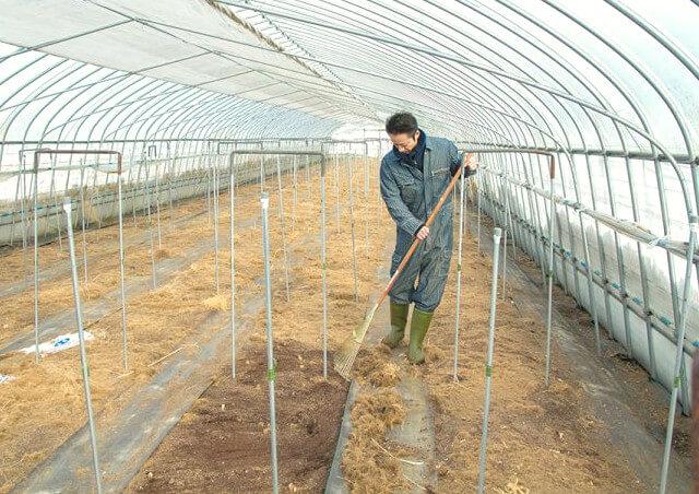 北海道が提唱する「クリーン農業」とは?